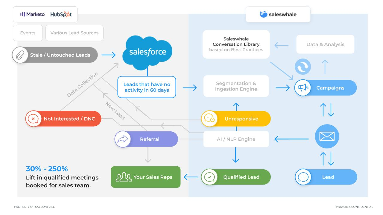 Saleswhale workflow example
